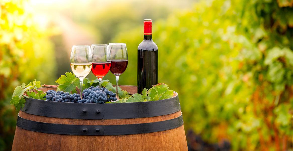 Wine, Sparkling Wine & Champagne